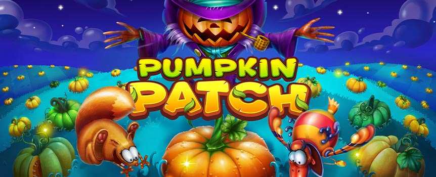 Pumpkin Patch's paytable combines themed icons such as Acorn, Pumpkin, Crow, Corn, and Squirrel with lower-paying cards from Tens to Aces. Symbols with a higher rating can turn other items into more rewarding options, so when a Squirrel lands next to Pumpkin, you'll get a Wild as a result. Naturally, it is possible to use it as a replacement for another icon when forming a winning combination.