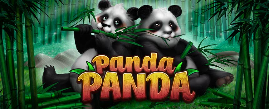 In Panda Panda, the main character has a major role in the game. The lovable black and white bear is the Wild symbol, substituting for all other symbols except for the Scatter symbol. When the panda scrambles onto the reels, he may appear stacked, covering all positions on the reel. Any panda may randomly turn into a double panda which counts as two symbols. The Scatter symbol, at first look, appears to be the yin and yang symbol, but when you look closer you will see that in fact, this is a close-up of the panda's eye.